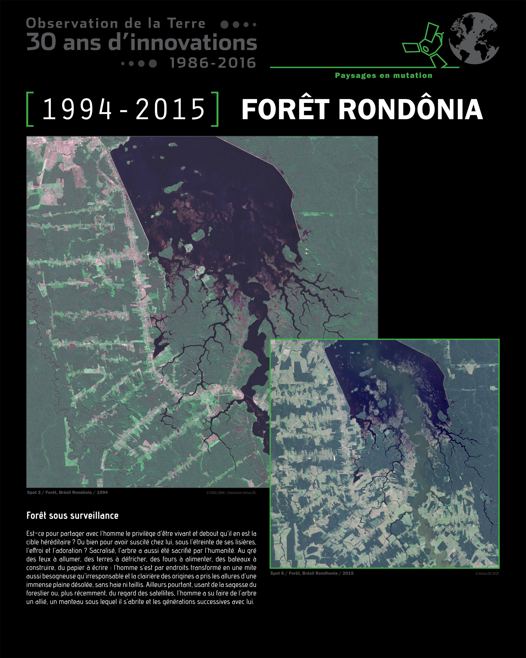 is_spot-30ans-foret-rondonia-13.jpg
